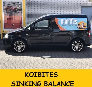 CADDY KOIBITES - kopie