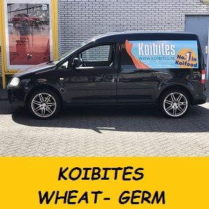 CADDY KOIBITES - kopie.jpg WHEAT GERM