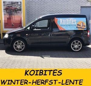 CADDY KOIBITES.jpgWINTER-HERFST-LENTE KOIVOER