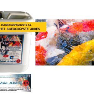 Malamix-5liter-Maarten-lammers budgetkoiproducts melkzuur1