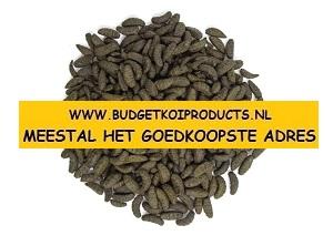 midori koivoer budgetkoiproducts