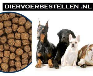 premium hondenbrokken